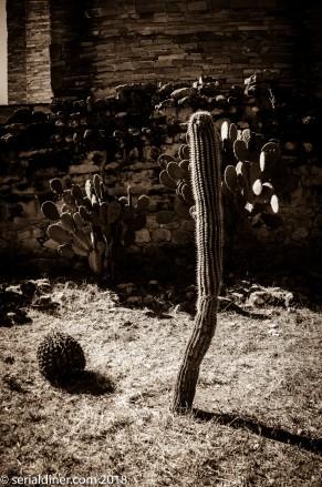 Mexico-1-81